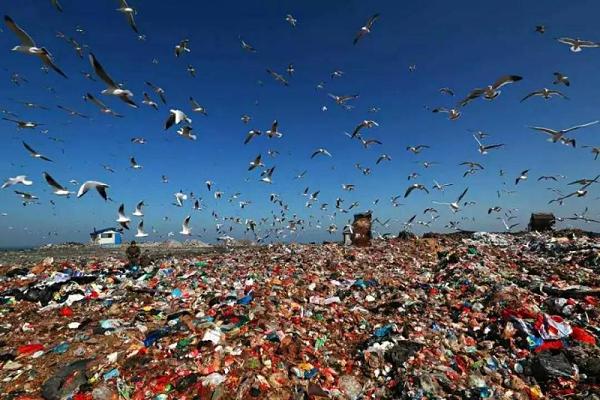 固体垃圾废弃物