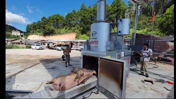 动物焚烧炉