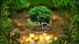 叮咚!宏利环保倡议书邀您查收!