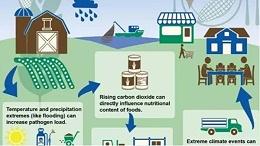 全球极端性天气频发!我们该如何保护地球,控制气体排放?